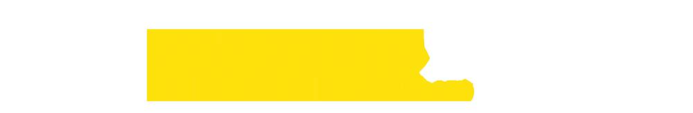 Studio Led 250 Logo